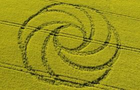 2008年4月19日的麦田圈俯视图