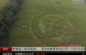 印尼首现神秘麦田怪圈