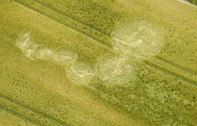 2012年6月26日威尔特郡麦田怪圈报告