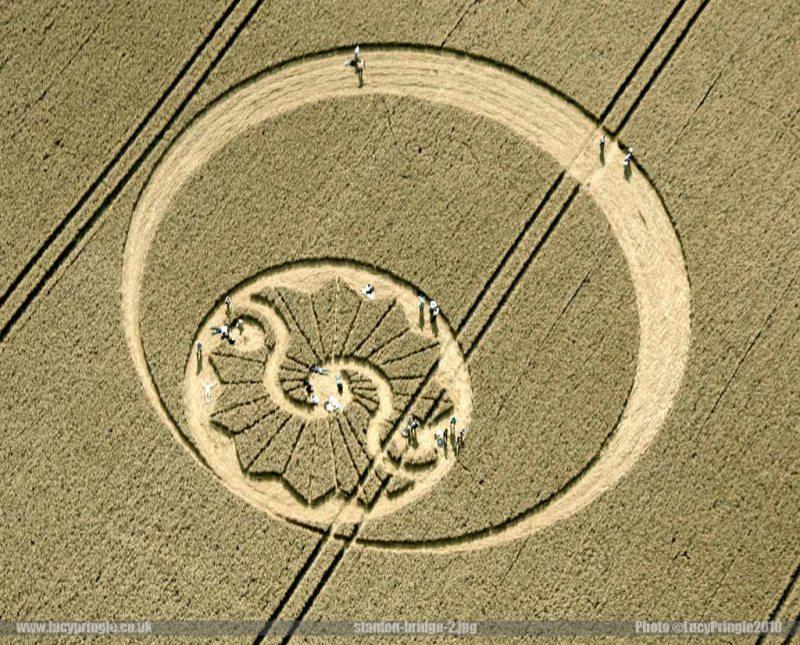 2010年8月8日麦田怪圈图片