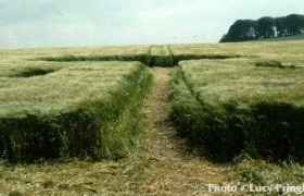1991年 9日6月威尔特郡形成的麦田怪圈