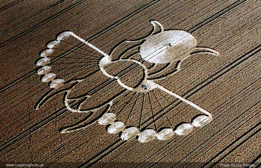 2005年8月21日麦田怪圈图片